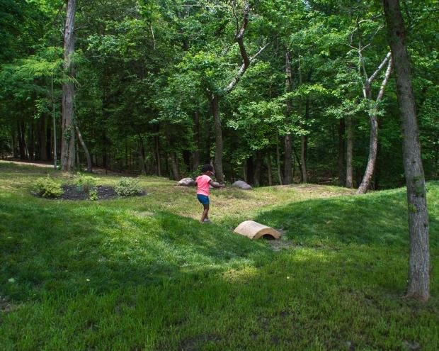 Maxine is walking in a wide green park