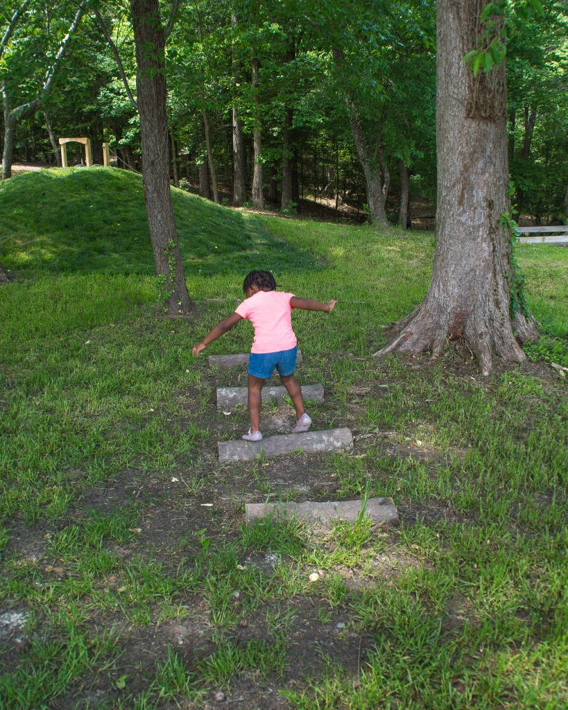 Maxine is walking across small logs in the ground. The background is green and trees